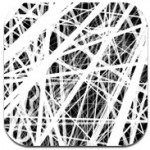 Thicket iPad App
