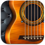 Pearl Guitar Acoustic Steel For iPad