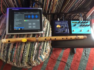 Bansuri iPad sample